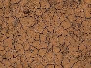 La degradación de los suelos