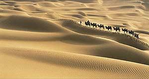 Según un informe de la ONU : el cambio climático también amenaza a los desiertos