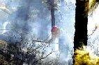 Los incendios han devastado en España cerca de 83.000 hectáreas este año