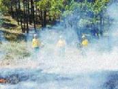 Continúan los incendios en Gran Canaria: un vecino de San Mateo, detenido por provocar el incendio de Lomo Gallego