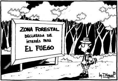 Avisos forestales