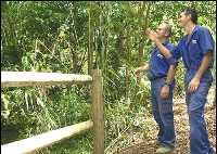 El Gobierno de Canarias fija como prioritaria la repoblación forestal de Los Tilos de Moya