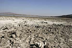 El litoral mediterráneo será la región de Europa más afectada por el cambio climático. España sufre la peor sequía de su Historia.