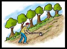 El Ayuntamiento de Dénia obligará a mantener el cultivo de 10 millones de m2 para frenar la erosión, desertificación y la especulación urbanística