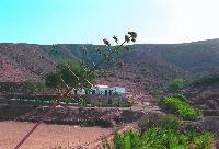Refuerzo a la lucha contra la desertificación