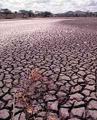 Una cuarta parte de España sufre un grave proceso de erosión