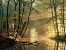 La UE apuesta por la creación de bosques para combatir el cambio climático