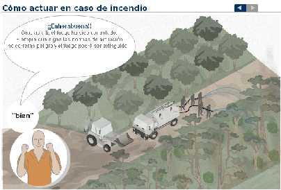 Cómo actuar en caso de incendio forestal (gráfico interactivo)