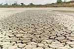 Más desierto, más sequía y ausencia de reacciones