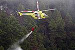 2.500 hectáreas se han quemado en Canarias por incendios provocados y negligencias