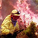 La Red Española de Desarrollo Rural propone medidas de emergencia contra los incendios