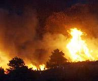 Aumenta en España un 25% la superficie quemada por incendios forestales