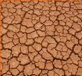 Gran Canaria, Fuerteventura y Lanzarote quedan fuera de las ayudas por la sequía que dá Madrid